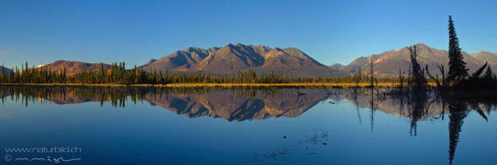 Panorama Alaska Spiegelung Bergkette