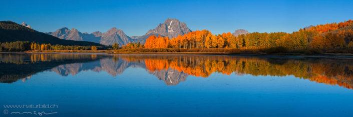 Panorama Grand Teton Spiegelung Nordamerika