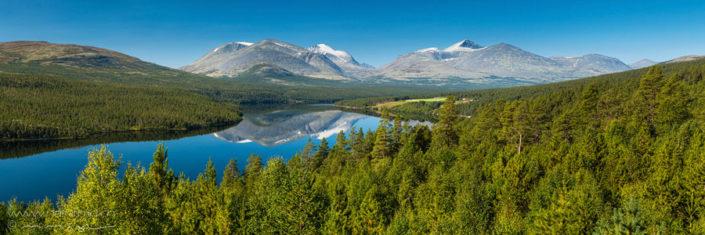 Panorama Rondane Norwegen Wald