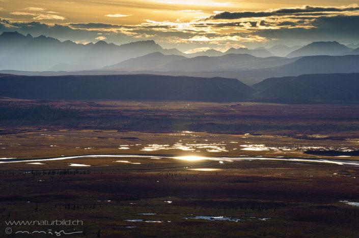 Alaska Ebene Fluss