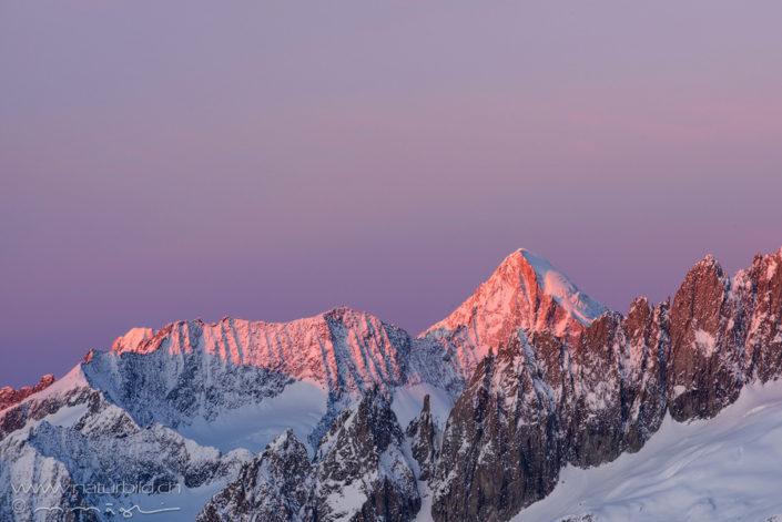 Aletsch roter Gipfel Kamm
