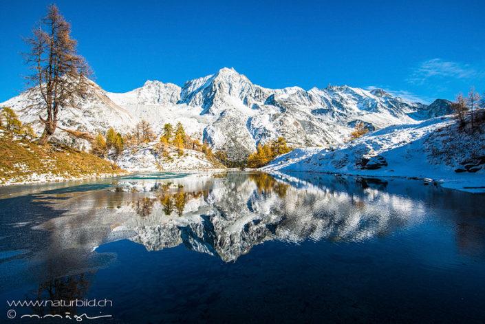 Arollatal Winter Seespiegelung