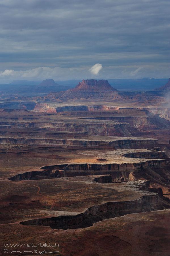 Canyonlands NP Fels Schlucht