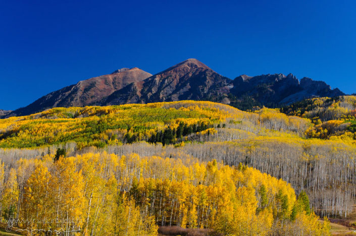 Colorado Herbst USA