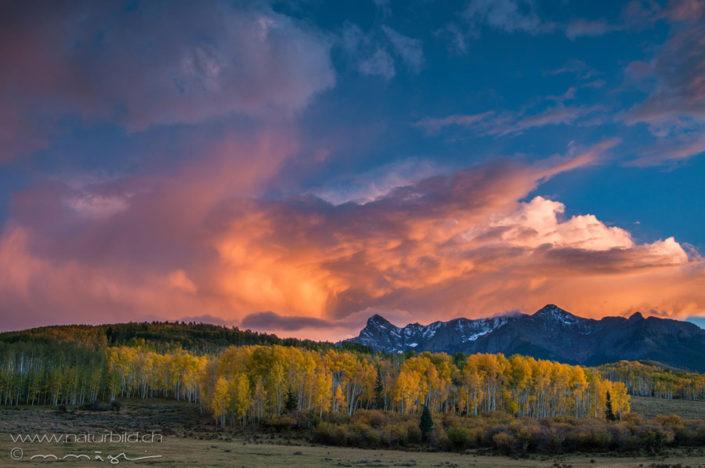 Colorado Herbst Baeume
