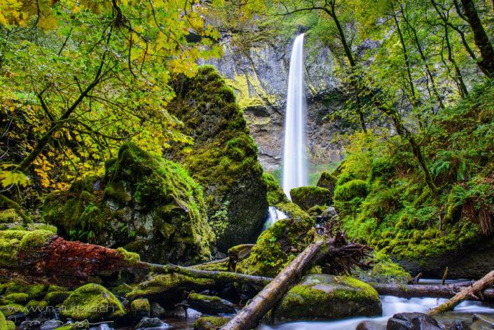 Columbia River Gorge Nordamerika Wasserfall