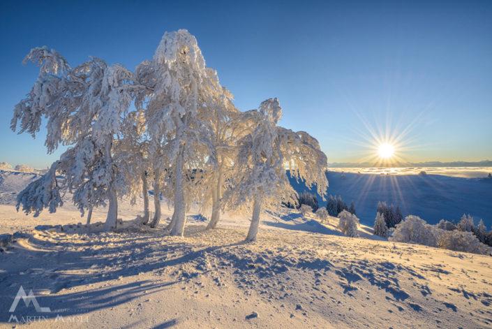 Jura Winter Sonne