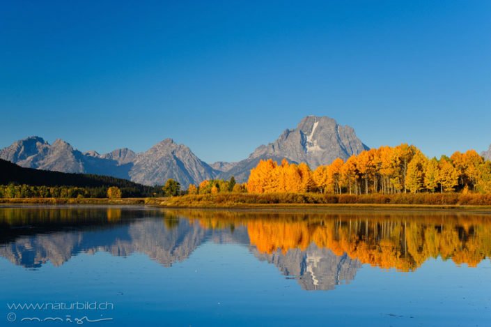 Grand Teton Wyoming Spiegelung