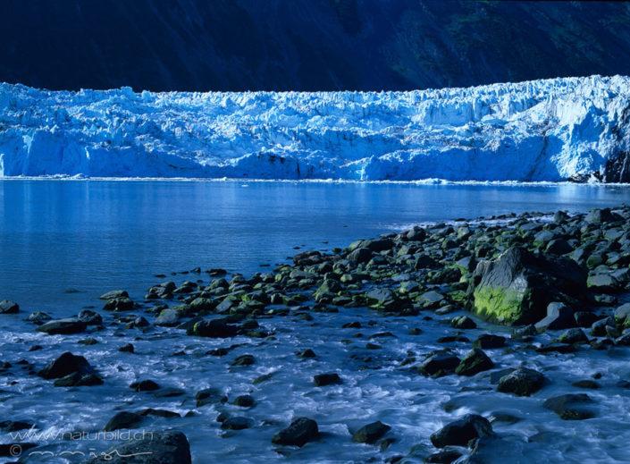 Harriman Fjord Gletscher See