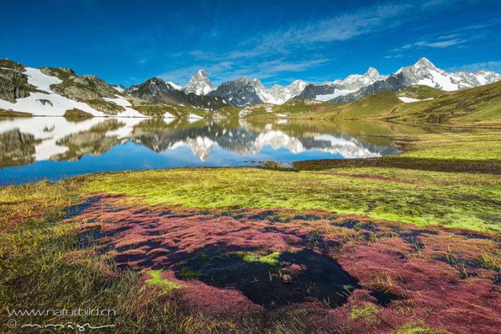 Lacs de fenetre See Frühling