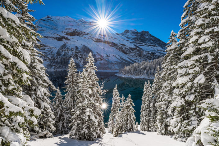Oeschinensee Bergsee Winter
