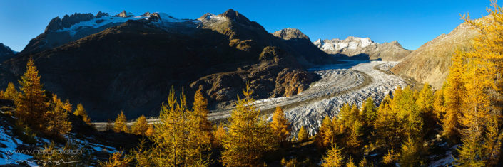 Panorama Aletsch Herbst Geltscher