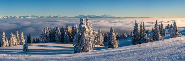 Panorama Schneelandschaft Nebelmeer