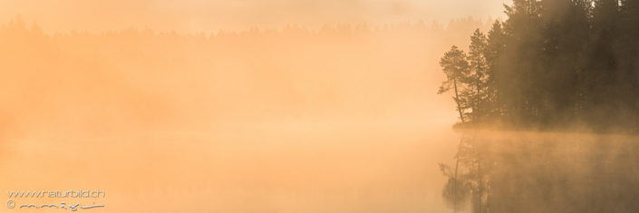 Panorama Etang de la Gruere Seeufer Dunst