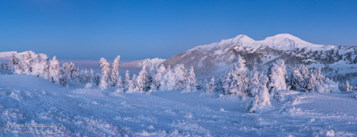 Panorama Glaubenberg Winter