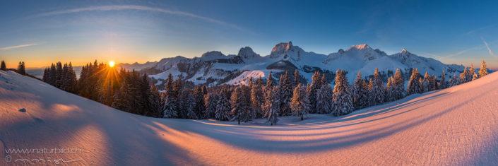 Panorama Gurnigel Sonnenaufgang Schneefeld