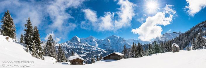 Panorama Schweiz Alphuette Eiger