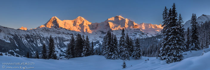 Eiger Winter Panoramafoto