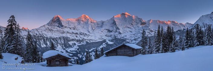 Panorama Eigen Mönch Jungfrau Winter
