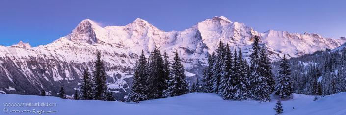 Panorama Eiger Mönch Jungfrau Winter