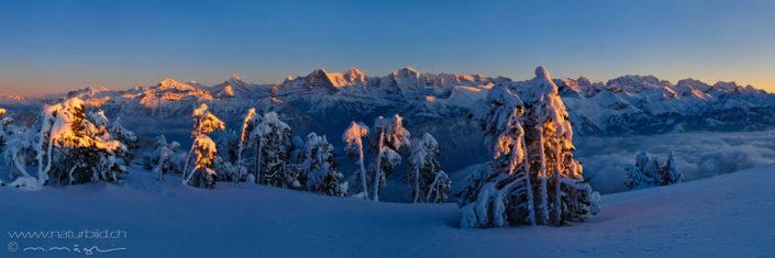 Panorama Niederhorn Winter Eiger Mönch Jungfrau