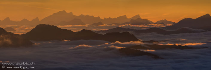 Bergpanorama Schweiz Nebelmeer