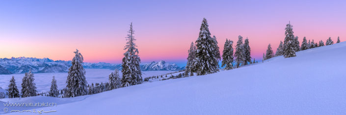 Panorama Rigi Winterlandschaft