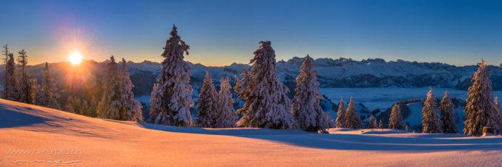 Panorama Schneelandschaft Sonnenuntergang
