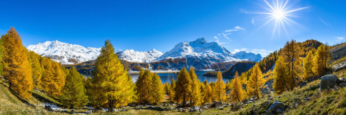Panorama Silsersee Herbst Schneeberge