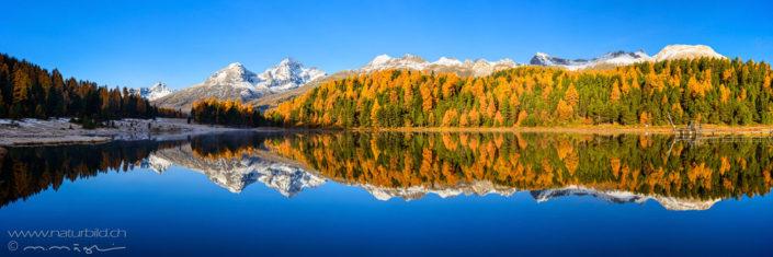 Panoramafoto Stazersee Herbst