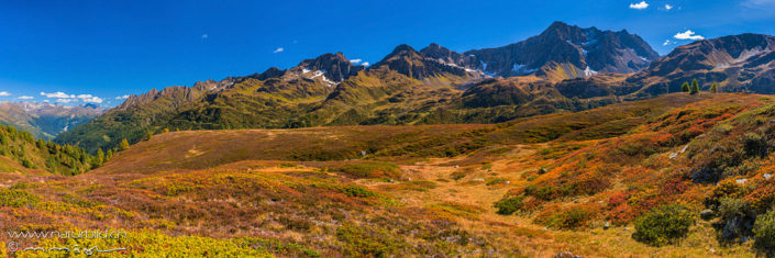 Alpenpanorama Val Bedretto Bergstraeucher