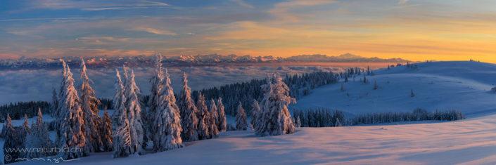 Panorama Vue de Alpes Schneelandschaft Nebelmeer