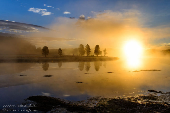 Yellowstone Sonnenaufgang Nordamerika