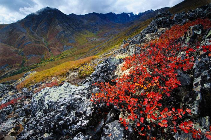 Yukon Canada Berge