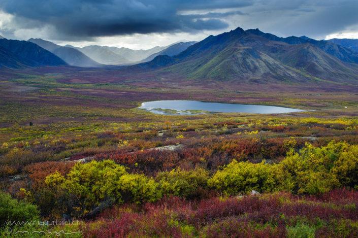 Yukon See Ebene
