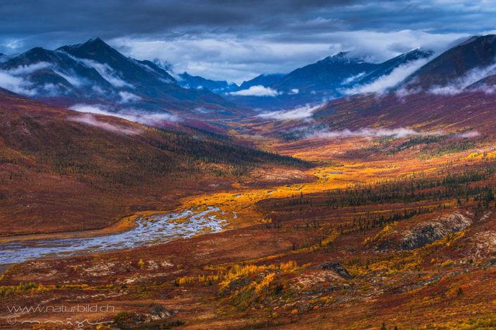 Yukon Flussebene Herbst