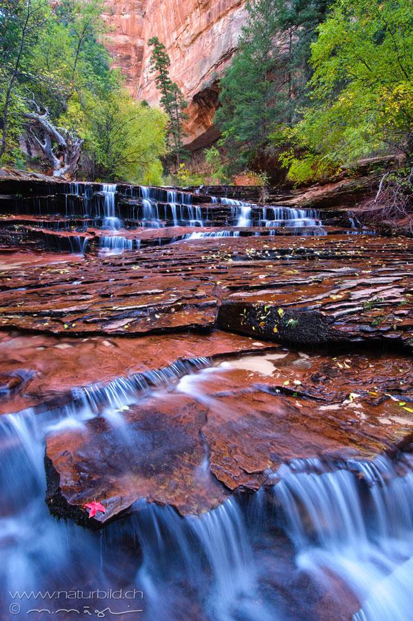 Zion Utah Fluss