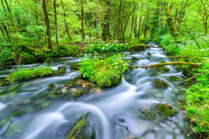 Bach Jura grün