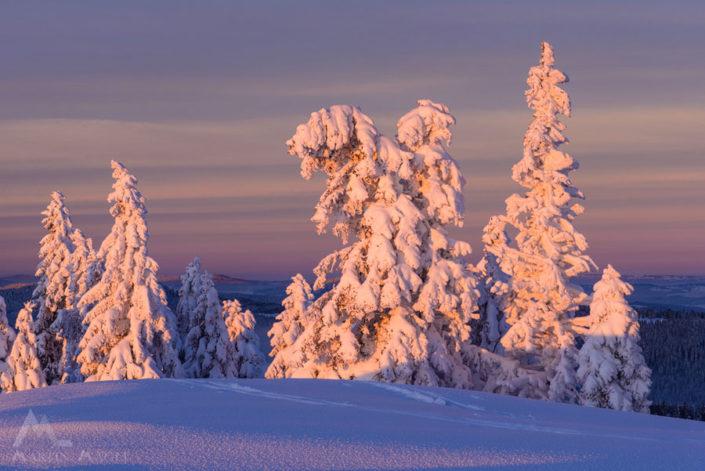 Vue des Alpes Winter