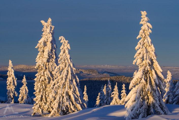 Jura Neuenburg Winter