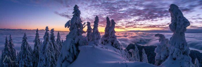 Panorama Jura Winter