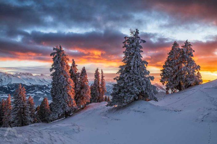 Rigi Winter Sonnenuntergang